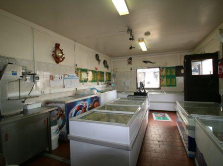 A Fresquinha – Peixaria e Congelados