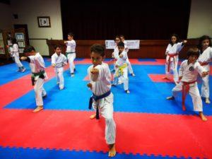Escola de Karaté Ericeira – Shotokai