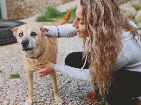 Da Joana – Pet Sitting